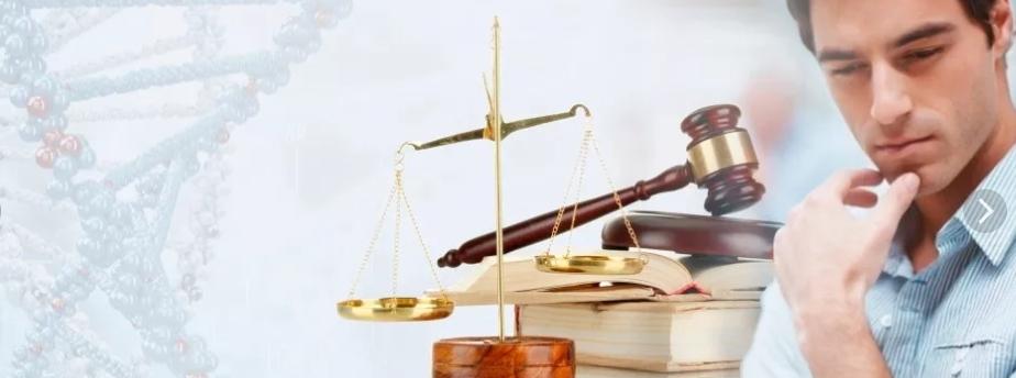Юрист по установлению отцовства